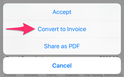Convert to invoice button.