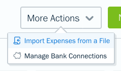 Import expenses from a file button.