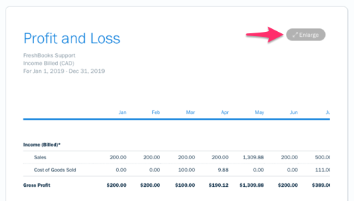 Enlarge button on profit and loss report.